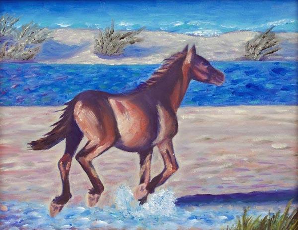wild horse beach pony