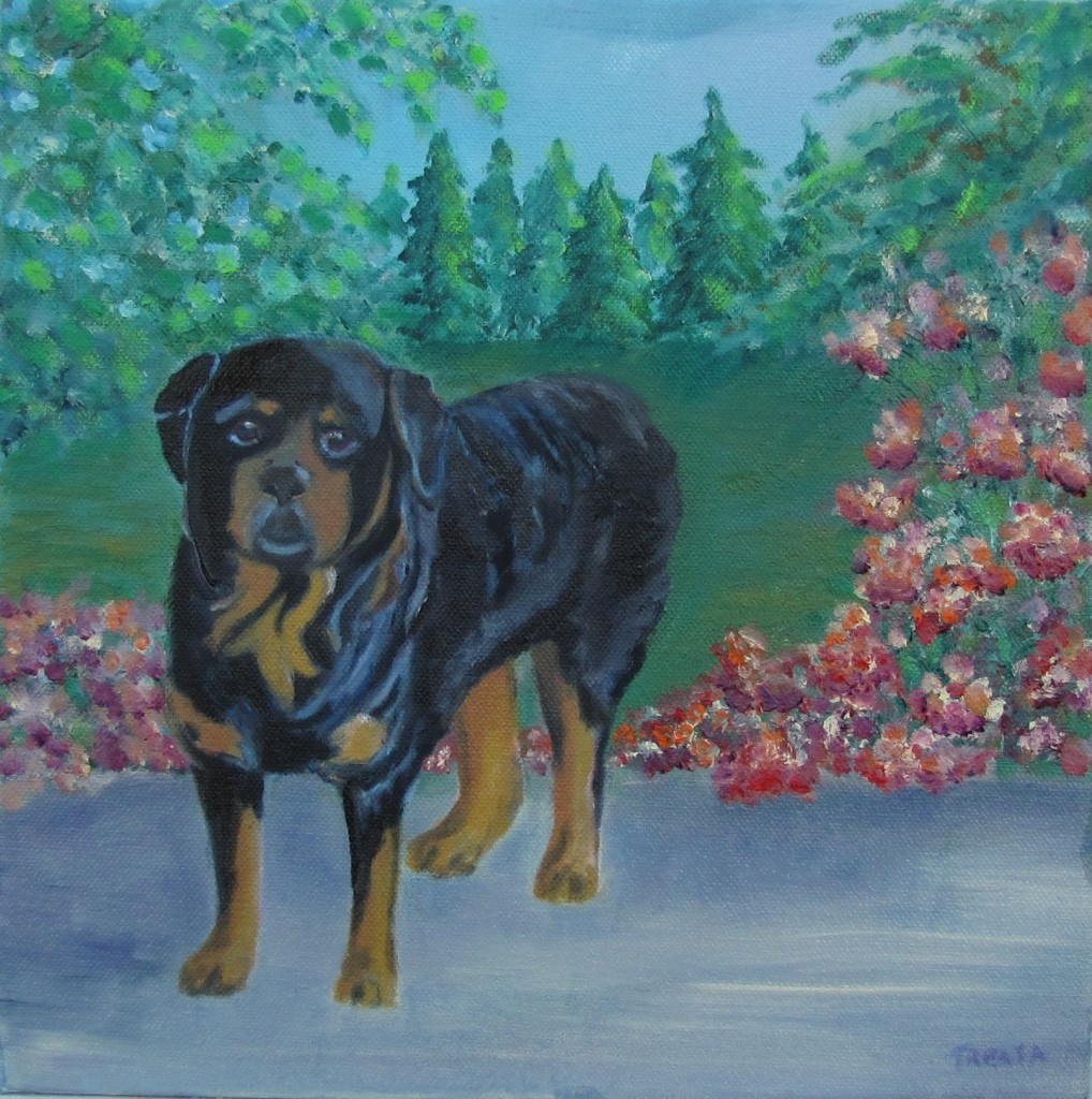 pet portrait rotweiller