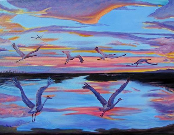Sandhill Cranes Lodi Cosumnes