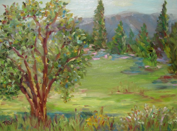 mountain view plein air