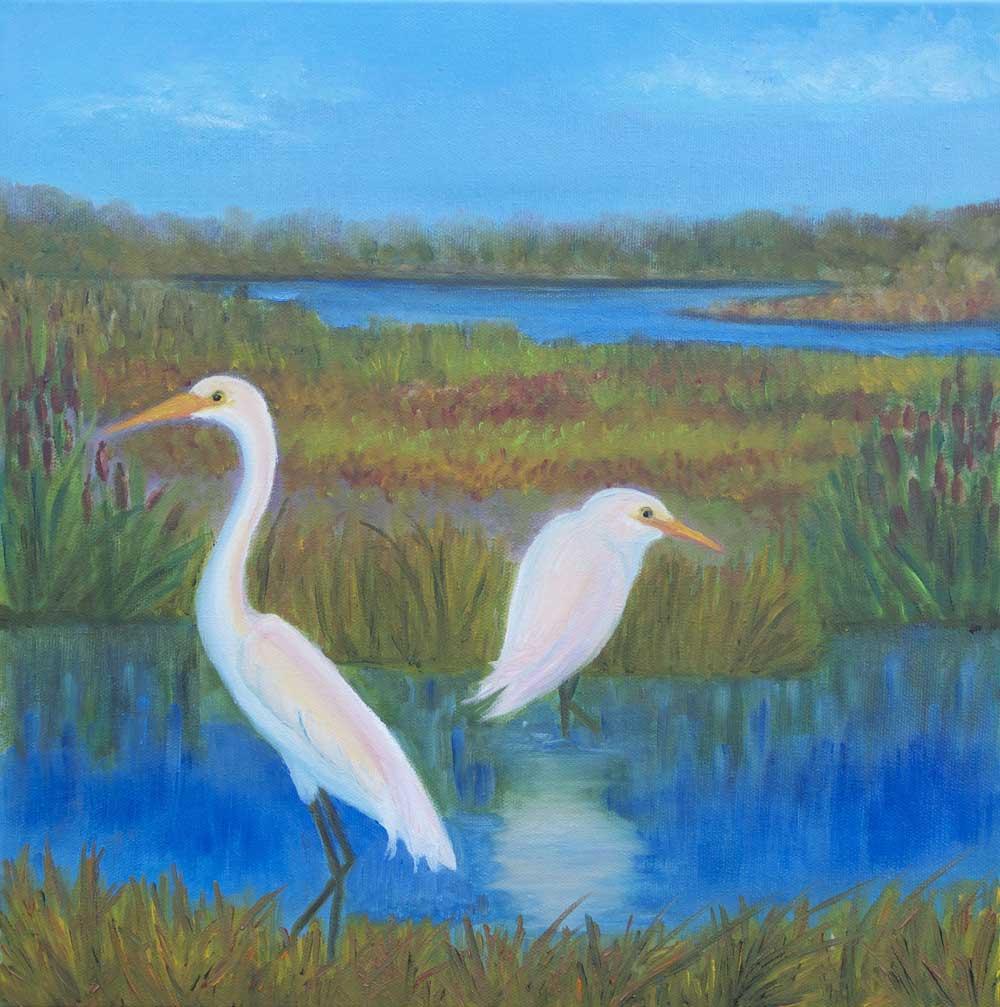 egrets coyote hills