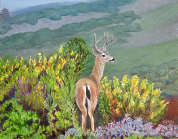 carmel valley black tailed deer painting